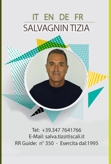 Salvagin